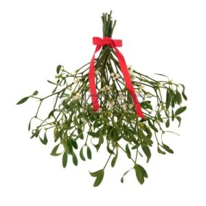 10994157-mistletoe-with-berries-and-tied-with-a-red-ribbon-with-bow-isolated-over-white-background